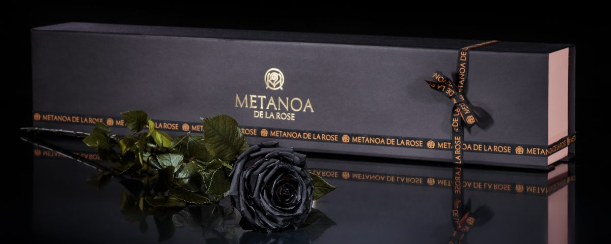 The Black Rose Metanoa